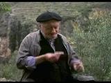 amanece que no es poco (1989, josé luis cuerda, Comedia absurda. Surrealismo)
