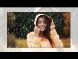 Владимир Брилёв - Час дождя