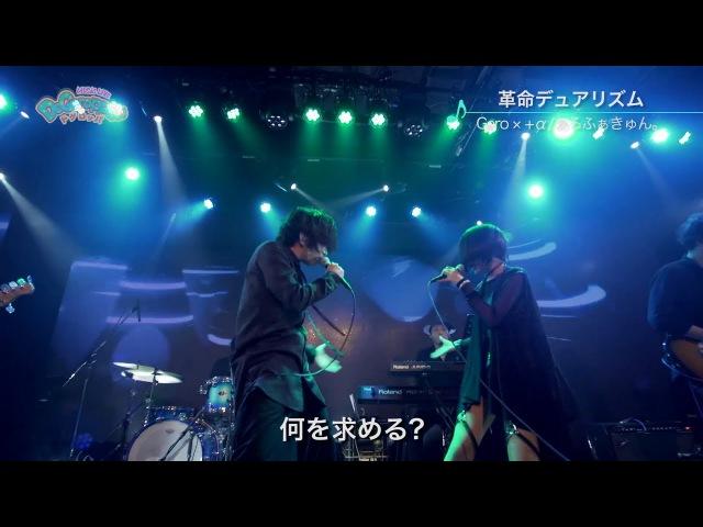 革命デュアリズム/Geroα/あるふぁきゅん。【MUSIC LIVE ドゲロッパ! 4】