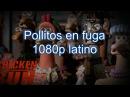 Descargar Pollitos en Fuga 1080p HD
