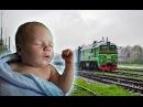 Белый Шум для Сна Ребёнка Поезд Стук Колёс Шум Дождя