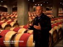 История виноделия Лучшие вина мира