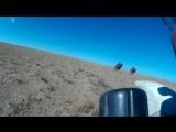 Валим с моими гусями по пустыне 100км/ч вдоль ЛЭП, заодно погоняли верблюдов)))