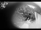 Свадьба Валерии и Павла. Фотограф В.Артышевская