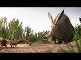 крабы, пингвины и муравьи