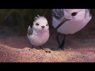 Piper (Disney Pixar)