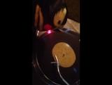 Jose taco &amp vinyl!