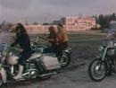 Дьяволицы на колесах  She-Devils on Wheels
