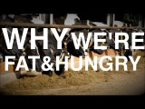 Why we get Fat AND Hungry (Biology of Weight Gain &amp Low-Carb )