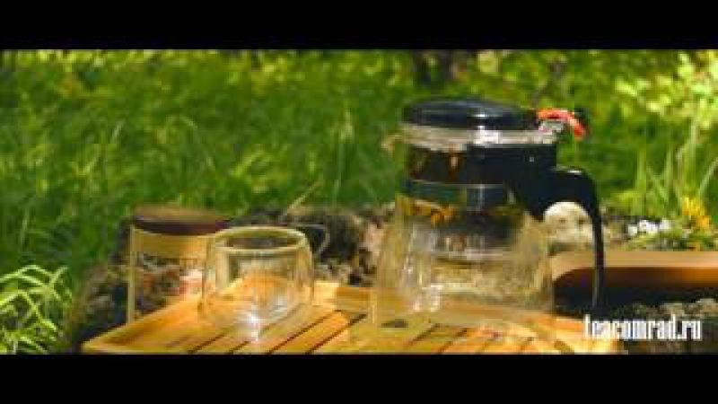 Типот.Чайник с системой слива для быстрого заваривания чая.