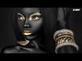 Tribal Tech House Mix 2017 (Gold &amp Black) Dj Swat