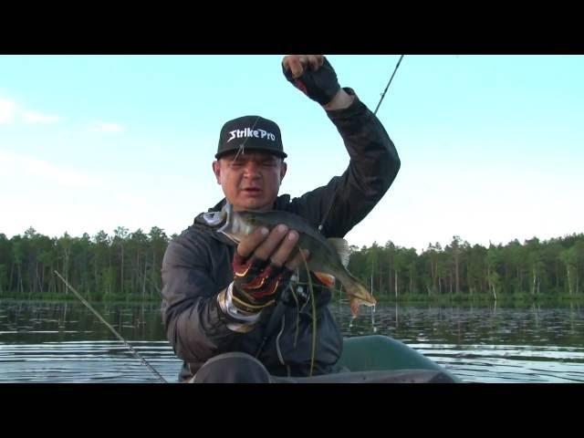 Ловля окуня на неогруженную резину. Виброхвост Crazy Fish Tough 5