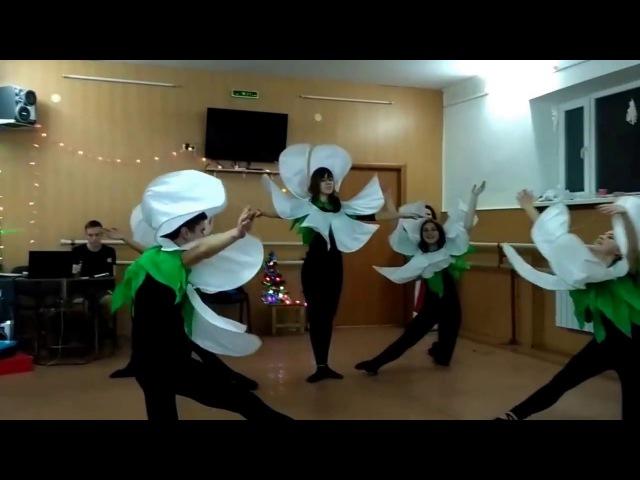 ЦВЕТОЧКИ-ПЕРЕРОСТКИ на Новогоднем вечере - 2017 - в РАДУГЕ