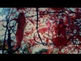 Richard Durand &amp Pedro Del Mar &amp Roberta Harrison - Paint the Sky
