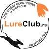 LureClub - бега за механическим зайцем (курсинг)
