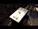 Технология быстрого копчения без маринования в коптильне горячего копчения