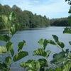 Ruslandia Safari-Eco-Park