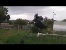 Сосед на даче пугало поставил. Un vecino en el huerto puso el espantapájaros.