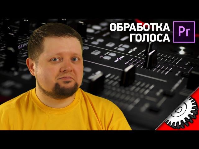 ОПЕРАТИВНАЯ ОБРАБОТКА ГОЛОСА В Premier Pro