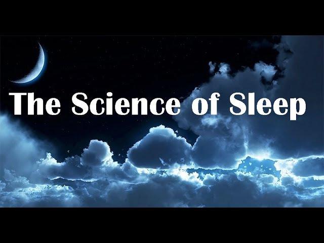 Наука Сна / მეცნიერება ძილზე (რუს ენაზე) / The Science of Sleep (2016)