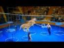 Уникальная цирковая программа Артура и Карины Багдасаровых в Астрахани!) 2015 12 19 3133