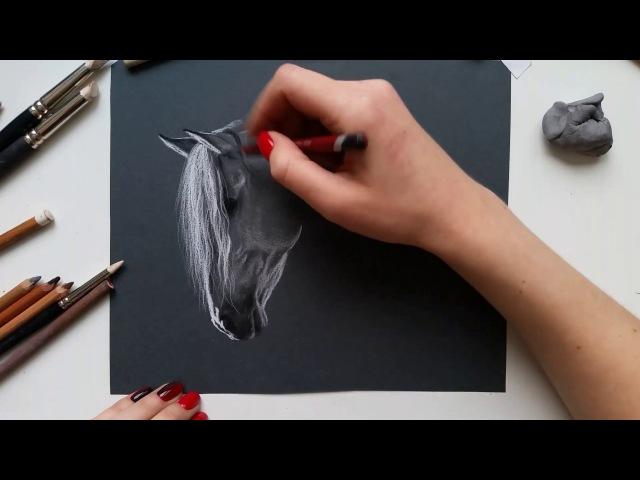 Рисуем лошадь пастелью (часть 4)