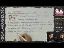 Canlılığın Temel Birimi Hücre - Sitoplazma ve Organeller -1