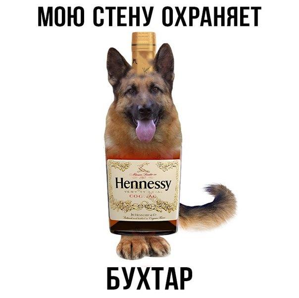 Фото №456261918 со страницы Никиты Андреева