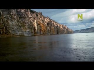 Планета на грани исчезновения / Mass Extinction Life on the Brink (2014) HD 720p
