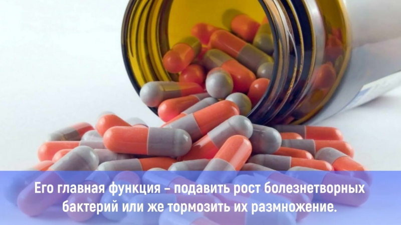 Вес после антибиотиков