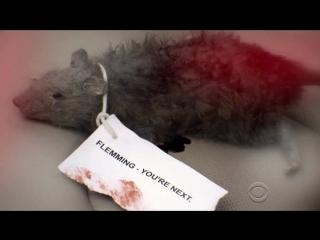 Морская полиция: Спецотдел \ NCIS - 14 сезон 9 серия Промо Pay to Play (HD)