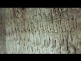 BBC Атлантида в Джунглях Ангкор ВатСокрытый МегаполисJungle Atlantis Angkor Wats Hidden Megacity (2014) HD [720]