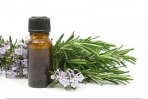 Применение эфирного масла эвкалипта