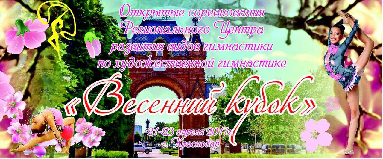 «Весенний кубок», 21-23.04.2017, Краснодар