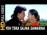 Yeh Tera Sajna Sawarna | Alka Yagnik, Kumar Sanu | Cheetah 1994 HD Songs | Mithun Chakraborty