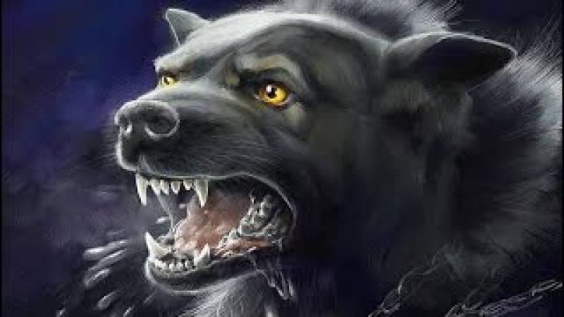 «Даже собака почувствовала ревность к Пророку! ﷺ» (До слез)