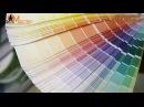 Уроки ремонта от ОтделМастера Выбор интерьерной краски ehjrb htvjynf jn jnltkvfcnthf ds jh bynthmthyjq rhfcrb