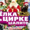 Новогодняя Елка в цирке-шапито Пенза 28.12-08.01