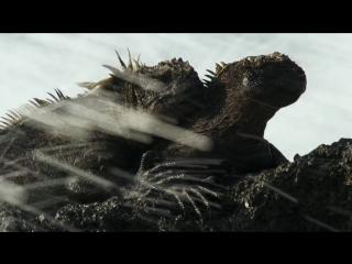 BBC Планета Земля 2 сезон 1 серия Острова / Planet Earth II (2016) HD