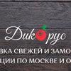 Дикорус - заготовитель ягоды и грибов