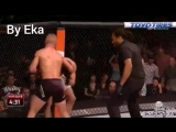 TJ Dillashaw vs Renan Barao 2