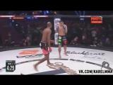 Майкл Пэйдж vs. Фернандо Гонсалес. Bellator 165