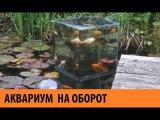 КАК ЭТО СДЕЛАНО  АКВАРИУМ НАОБОРОТ   Aquarium from the other side