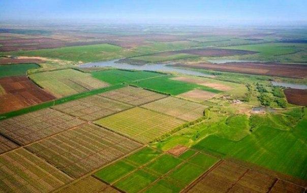 стоимость аренды земельного участка сельхозназначения в краснодарском крае - фото 7