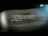 «Чужие (15). 10 заговоров инопланетян по поводу будущего Земли» (Документальный, НЛО, фантастика, 2012)