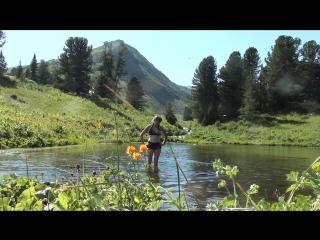 Алтай особенности купания в горных озерах
