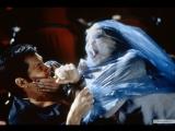 Отзвуки эха   (1999)