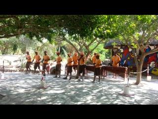 Хор песни и пляски Зулусов.Зоопарк.Тунис.