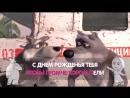 Маша и Медведь - Песня С Днём Рождения (Караоке-клип Пой с Машей! из серии Раз в