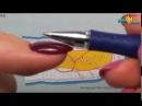 Анатомия аппаратного маникюра - ФРАГМЕНТ урока из видеокурса «МАНИКЮР Гель-лаком для САМОУЧКИ»